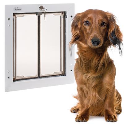 Medium PlexiDor dog door