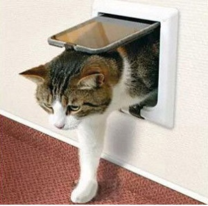 Thin Doors Lockable Cat Flap Dog Doors Cat Doors