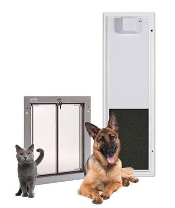 Shepherd and cat with pet doors